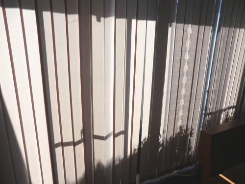 野外からの光を調整し、室内快適です