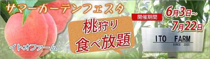 桃狩りカーテンフェスタ開催