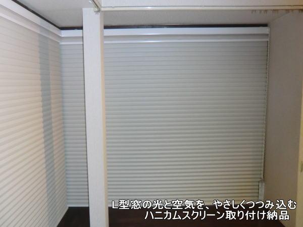 45mmのハニカムスクリーン