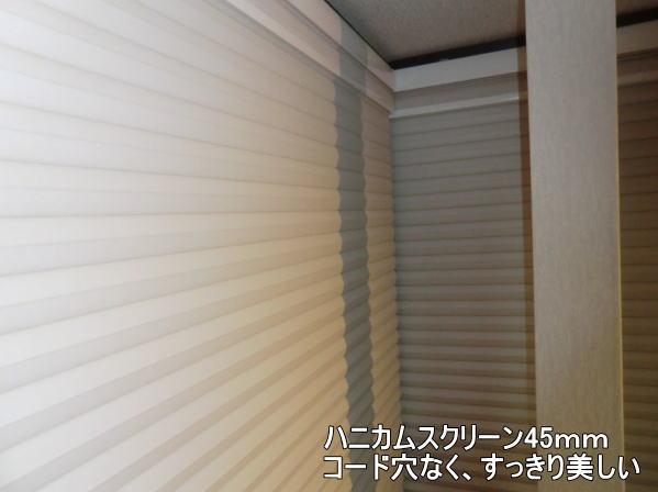 優れた遮熱・断熱性能のハニカムスクリーン