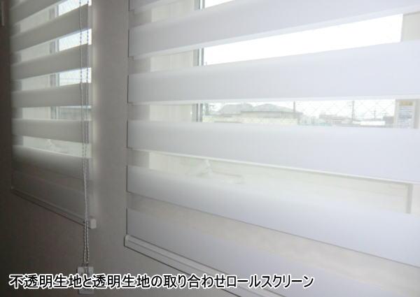 不透明生地と透明生地のロールスクリーン納品